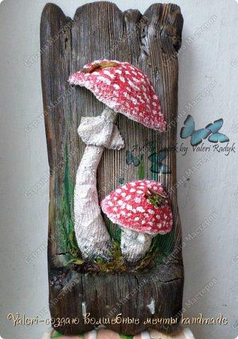 Дорогие ДРУЗЬЯ, всем огромный привет!!! Наконец то и я добралась до браша-ура!!! Давно задумала создать ключницы с объёмными грибочки(и не только грибочками-но это пока в планах) на брашированных досочках и вот мои мечты воплотились в реальность!  фото 9