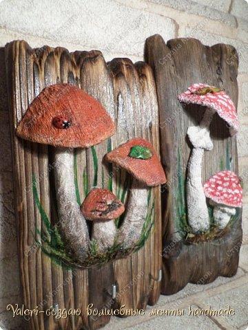 Дорогие ДРУЗЬЯ, всем огромный привет!!! Наконец то и я добралась до браша-ура!!! Давно задумала создать ключницы с объёмными грибочки(и не только грибочками-но это пока в планах) на брашированных досочках и вот мои мечты воплотились в реальность!  фото 6