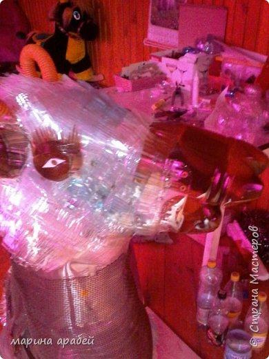 Козочка из пластиковых бутылок фото 4
