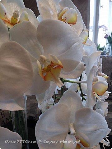 Букет белых орхидей из полимерной глины фото 5