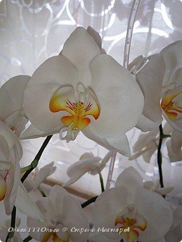 Букет белых орхидей из полимерной глины фото 9