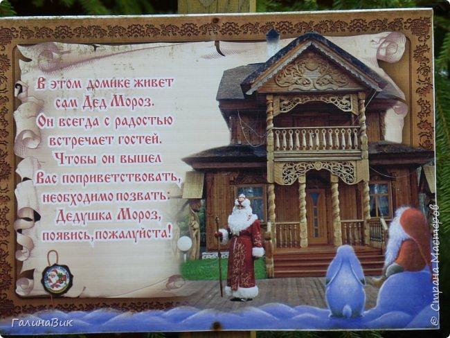 По дороге в Беловежскую Пущу наша туристическая группа заехала в город Каменец, раньше служащий опорным пунктом и преградой на пути к Берестью (Бресту),чтобы увидеть легендарную Каменецкую Вежу или Белую Вежу (башню). фото 21