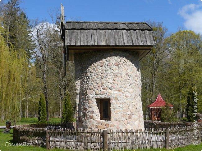 По дороге в Беловежскую Пущу наша туристическая группа заехала в город Каменец, раньше служащий опорным пунктом и преградой на пути к Берестью (Бресту),чтобы увидеть легендарную Каменецкую Вежу или Белую Вежу (башню). фото 34