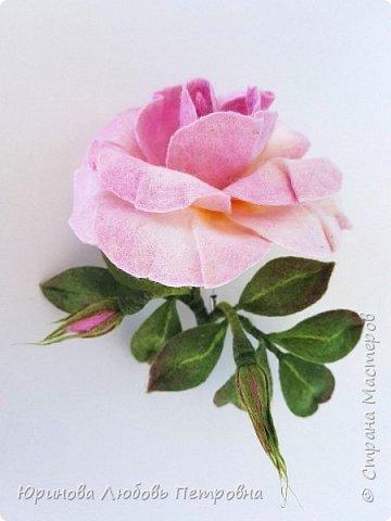 Чайная роза с бутонами. Брошь. Шерсть. фото 2