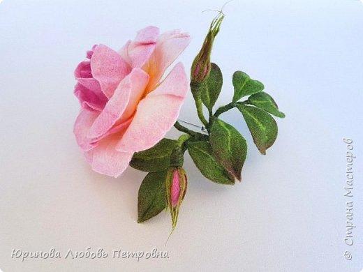 Чайная роза с бутонами. Брошь. Шерсть. фото 1