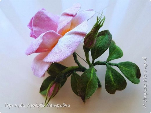 Чайная роза с бутонами. Брошь. Шерсть. фото 3