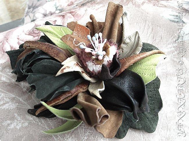 Две чёрные орхидеи родились за одну ночь! фото 15