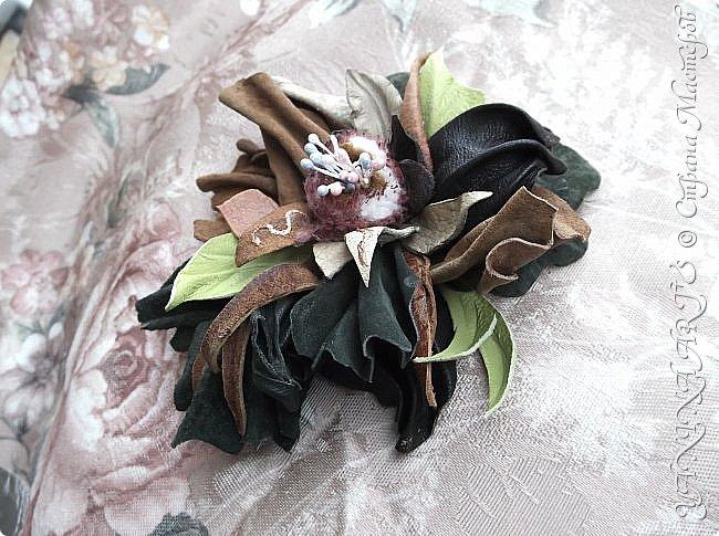 Две чёрные орхидеи родились за одну ночь! фото 17
