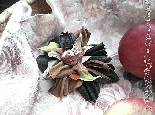 Две чёрные орхидеи родились за одну ночь! фото 16