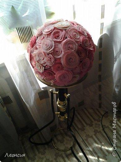 Мой первый шар из роз. Старенький, 7 лет скоро. Но продолжает цвести.  фото 1