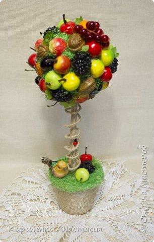Добрый день! Это фруктовое деревце было сделано на выпускной учителям школы в подарок. Такой небольшой подарок в учительскую, чтобы разбавить строгую рабочую  атмосферу, царящую там. Всем очень понравилось. Ну и слава богу! Будет и память о нас в школе. фото 1