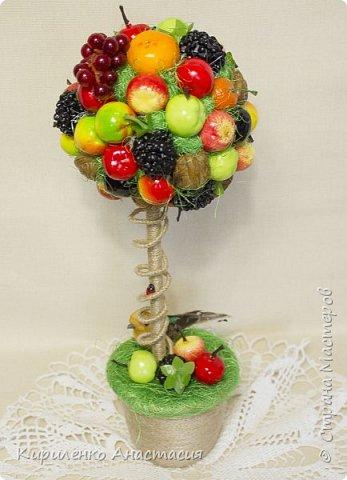 Добрый день! Это фруктовое деревце было сделано на выпускной учителям школы в подарок. Такой небольшой подарок в учительскую, чтобы разбавить строгую рабочую  атмосферу, царящую там. Всем очень понравилось. Ну и слава богу! Будет и память о нас в школе. фото 2