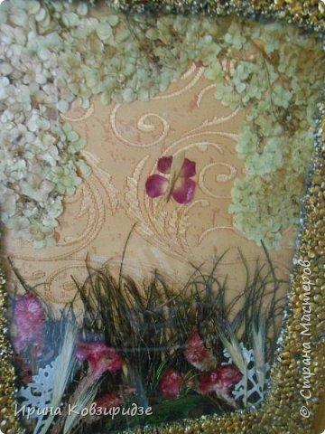 """Картина """"Летний сад"""" . Под стеклом, основа шёлк на картоне. На стекле чечевица, покрытая золотой акриловой краской и лаком.  Сухоцветы. Вместо травы - павлинья перья. фото 3"""