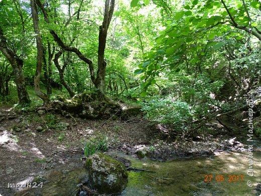 Здравствуйте, дорогие жители СМ. Хочу поделиться с вами фотографиями удивительного места - долины Сатеры. Находится это в Крыму, чуть в стороне от трассы Алушта-Судак. фото 5