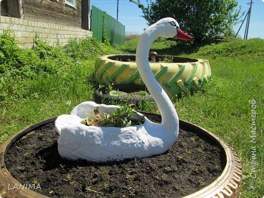 наконец то я доделала лебедя, нашла ему место,и спешу вам похвалиться! фото 2