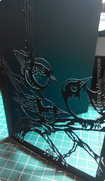 """Всем доброго времени суток! Вашему вниманию новая открытка с птичками. - Блестящий расписной малюр (лат. Malurus splendens) — птица из семейства малюровых. Встречается на большей части Австралии от центральной части западного Нового Южного Уэльса до юго-запада Квинсленда по всему побережью Западной Австралии. - Среда обитания птицы простирается от леса, до пустынных кустов обычно с достаточным количеством растительных укрытий. Питается, в основном, насекомыми и семенами. - Эскиз для """"вырезалки"""" выполнен, изменён и доработан по цветной работе австралийского художника анималиста Eric shepherd. (В оригинале - четыре птички, у меня - три, четвёртая """"физически"""" не влезла)) - Размер открытки 12х16см. фото 11"""