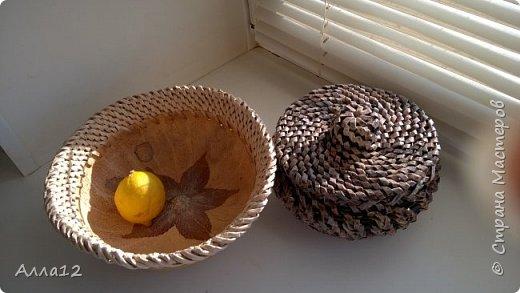 В прошлом году вырастила тыквы лагенарии. Разрезала тыкву, просверлила отверстия, оплела.   фото 1