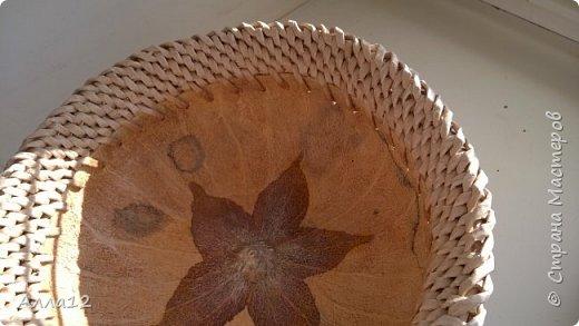 В прошлом году вырастила тыквы лагенарии. Разрезала тыкву, просверлила отверстия, оплела.   фото 2