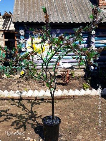 Дерево для украшения сада из пластиковых бутылок фото 12