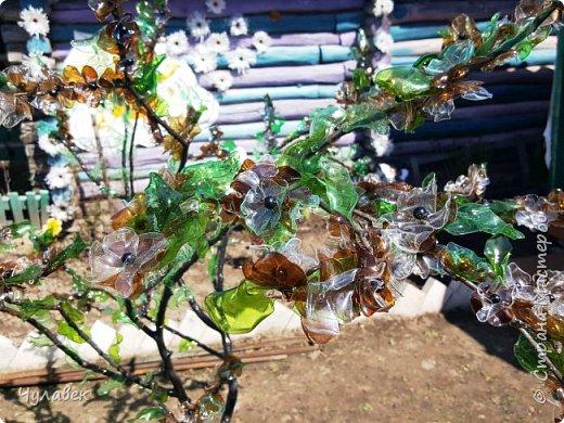 Дерево для украшения сада из пластиковых бутылок фото 9