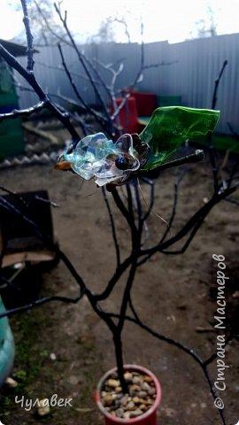 Дерево для украшения сада из пластиковых бутылок фото 6