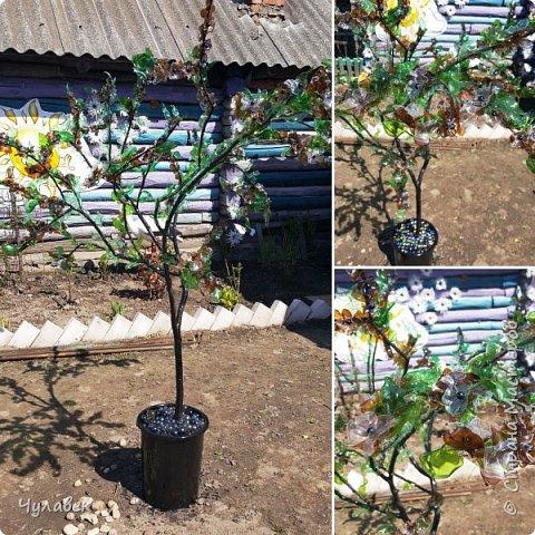 Дерево для украшения сада из пластиковых бутылок фото 4