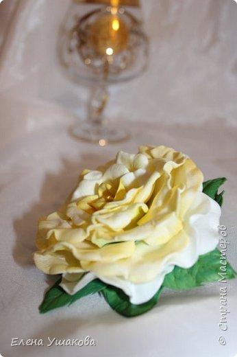 Розы из фоамирана фото 2