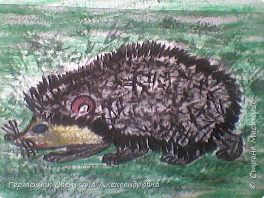 """По обобщающей теме """"Рассказы о животных""""  ребята подготовили  свои рисунки ,некоторые  раскраски. Л.Толстой """"Лев и собачка"""" фото 7"""