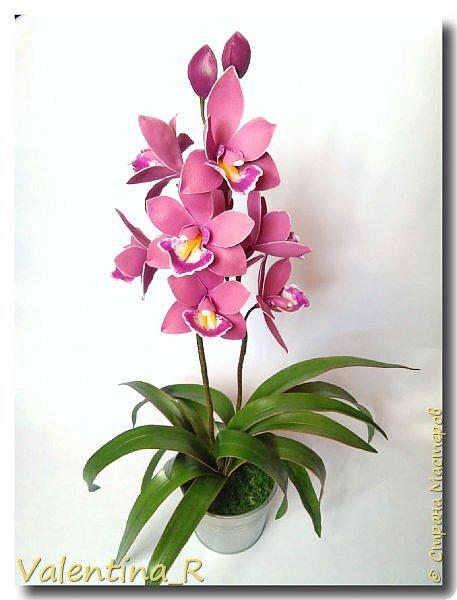 """Творю для себя... Люблю цветы, но делать их не совсем получается, но хочу... """"Вырастила"""" рябчик Императорский...  фото 2"""