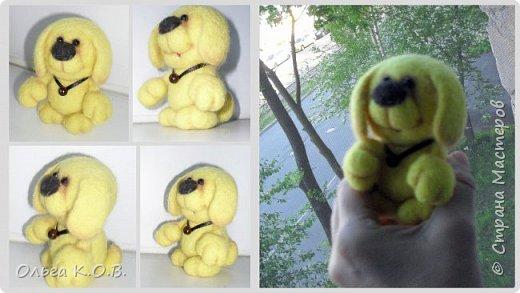 Желтый песик фото 2