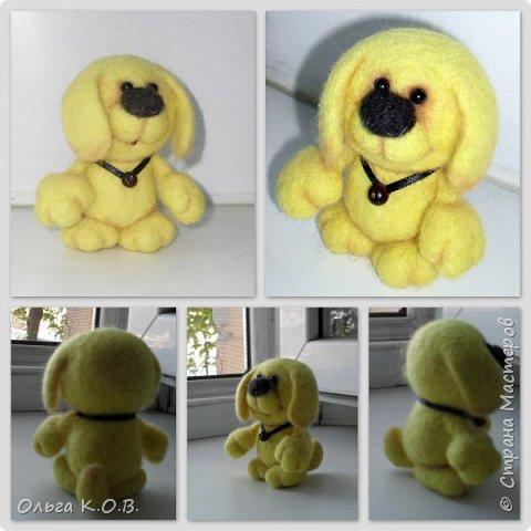 Желтый песик фото 4