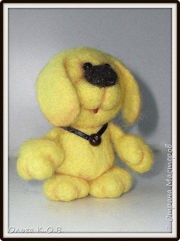 Желтый песик