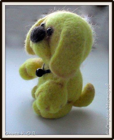Желтый песик фото 6