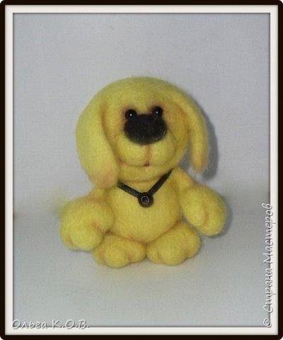 Желтый песик фото 3