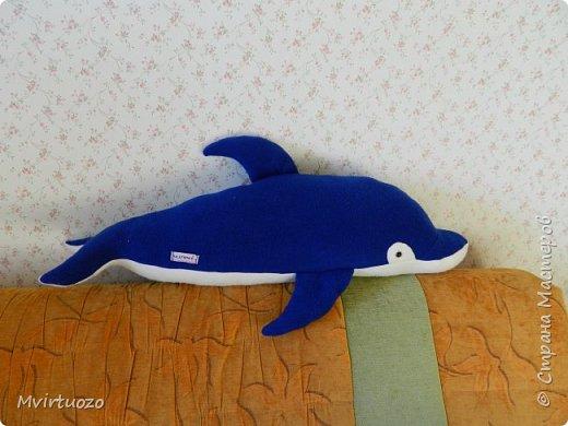 Моя племяшка - пловчиха! Ей скоро 10 лет, а она уже выступает на соревнованиях и выигрывает!! ...и очень любит дельфинов! Подготовила ей подборочку.. Футболка.. фото 8
