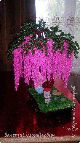 глициния розовая