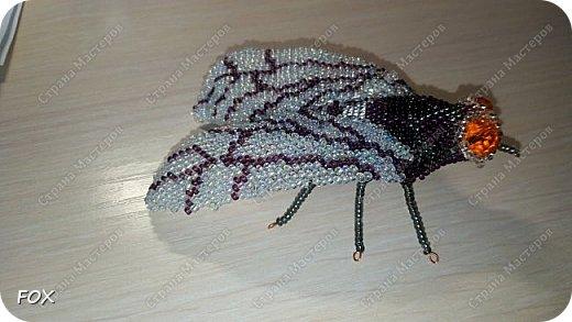 брошь-муха фото 1
