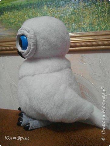 Белая полярная Сова фото 2