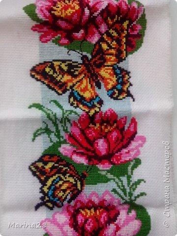 Бабочки в цветах