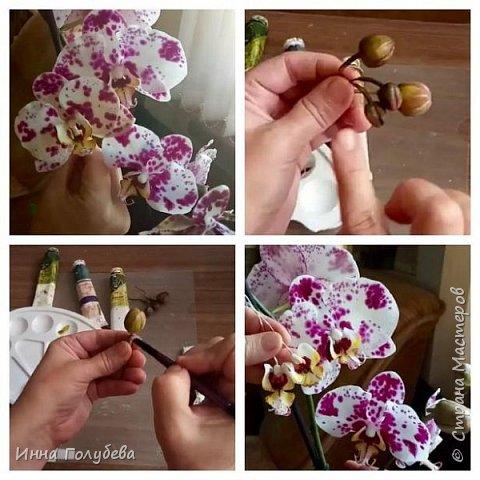 Привет, всем жителям чудесной страны. Я сегодня к вам вот с такой орхидеей. По тонировке бабочки, бутонов и самого цветочка я отсняла видео- мастер классы, которые вы можете посмотреть на моём канале на ютубе или на моей странице в контакте. Лепила и тонировала с живого цветочка. На некоторых фото моя орхидея с живым образцом. фото 21