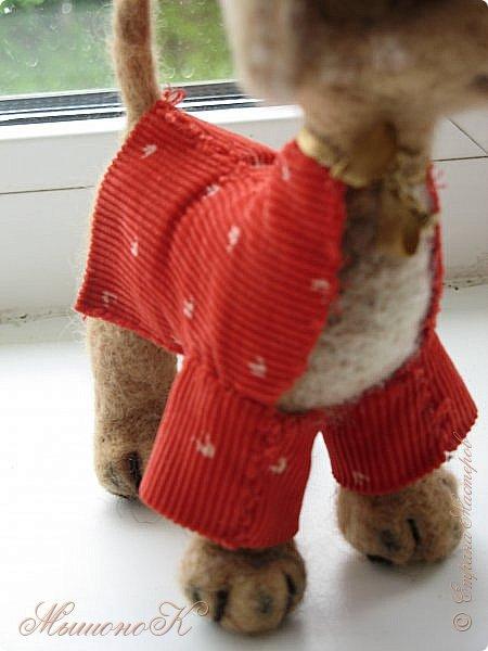 Приветик! =)  Сегодня я решилась - наконец попробовала сшить одежку для своей валяной собачки Сью.   Как получилось, решать только вам! Но я считаю, что для первого раза очень даже не плохо )  Итак! Сшила я кофточку. Шила из подручных материалов - из всего, что под руку попалось, из всего что в доме было.  Как точно ткань называется, я не знаю :( ( Стыдно даже как-то )  Вобщем, вот!  фото 8