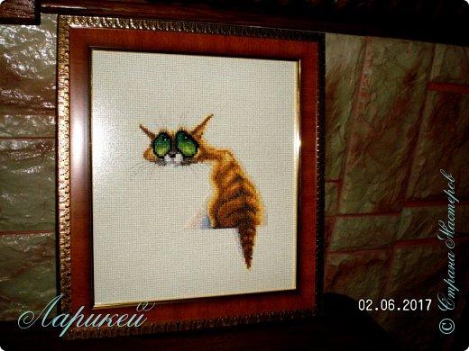 Очень я влюбилась в глаза этого кота!!! И не смогла не вышить его.Вышивала дней 5,в подарок начальнику. фото 1