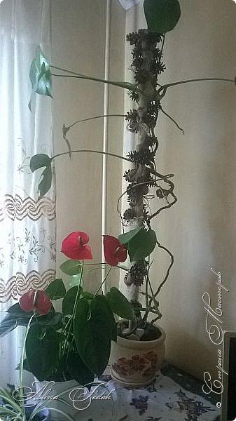 Опора для цветка фото 1