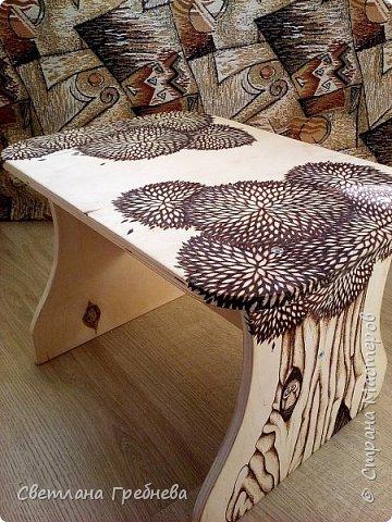 """Сын подарил табурет для дачи, сделал сам - из дерева может любой предмет мебели сотворить!!! Подарил со словами: """"Оформишь сама, ну как ты умеешь, что - нибудь эдакое"""" фото 7"""