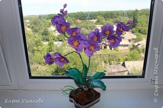 Одиночные орхидейки делала, теперь очередь дошла до цельного цветка. фото 1