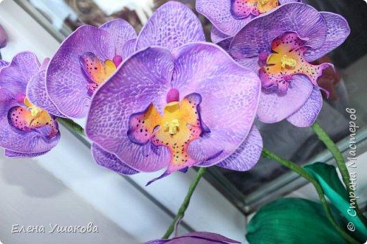 Одиночные орхидейки делала, теперь очередь дошла до цельного цветка. фото 4