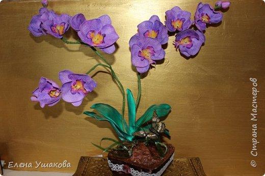 Одиночные орхидейки делала, теперь очередь дошла до цельного цветка. фото 5