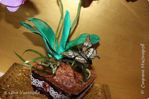 Одиночные орхидейки делала, теперь очередь дошла до цельного цветка. фото 3