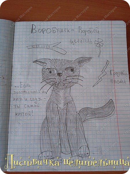 Привет всем! Я на конец то добралась до своих рисунков. Я рисую котов-воителей. Знакомьтесь, это Воробей. фото 2