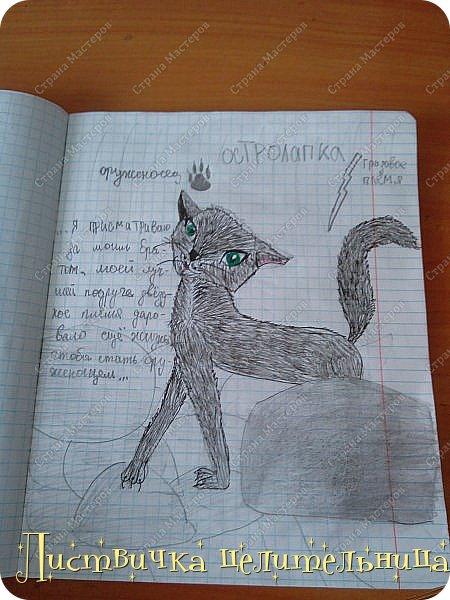 Привет всем! Я на конец то добралась до своих рисунков. Я рисую котов-воителей. Знакомьтесь, это Воробей. фото 4